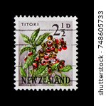 Small photo of MOSCOW, RUSSIA - OCTOBER 3, 2017: A stamp printed in New Zealand shows Titoki, New Zealand Oak (Alectryon excelsus), Pictorial Definitives serie, circa 1961