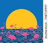 flamingo on the sunset sea... | Shutterstock .eps vector #748719997