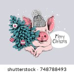christmas card. portrait of the ... | Shutterstock .eps vector #748788493