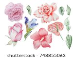 set with watercolor flowers.... | Shutterstock . vector #748855063