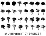isolated black  tree... | Shutterstock . vector #748968187