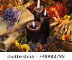 lavender bunch  healing herbs ...   Shutterstock . vector #748983793