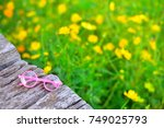 glasses on wooden and flower... | Shutterstock . vector #749025793