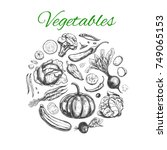 vegetables collection. vector... | Shutterstock .eps vector #749065153