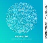 human internal organs concept... | Shutterstock .eps vector #749203807