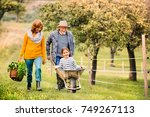 senior couple with grandaughter ... | Shutterstock . vector #749267113