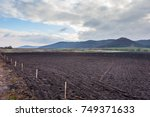 agriculture cultivated field... | Shutterstock . vector #749371633