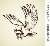 big pride hieraaetus... | Shutterstock .eps vector #749397193