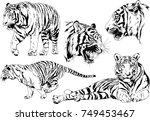 set of vector drawings on the... | Shutterstock .eps vector #749453467