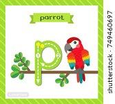 letter p lowercase cute... | Shutterstock .eps vector #749460697