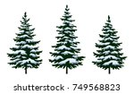 set green fir trees with white...
