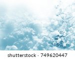 frozen winter forest with snow...   Shutterstock . vector #749620447