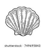 sea shell scallop. black... | Shutterstock .eps vector #749695843