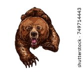 grizzly bear roaring and... | Shutterstock .eps vector #749714443