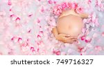 beautiful pregnant young woman... | Shutterstock . vector #749716327