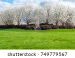 outdoor grass field park area.... | Shutterstock . vector #749779567