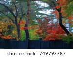 autumn kakunodate | Shutterstock . vector #749793787