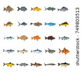 fish icons set. flat collection ... | Shutterstock .eps vector #749803513