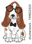 cute  basset hound with black... | Shutterstock . vector #749822323