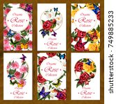 postcard set with floral design.... | Shutterstock .eps vector #749885233