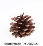 pine cones isolated on white... | Shutterstock . vector #750002827