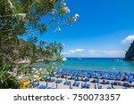 negombo beach  ischia ...   Shutterstock . vector #750073357