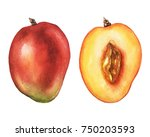 watercolor mango pair. hand... | Shutterstock . vector #750203593