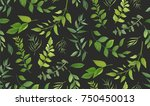 seamless pattern of eucalyptus... | Shutterstock .eps vector #750450013