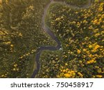 the river stream in the autumn... | Shutterstock . vector #750458917