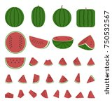 watermelon collection  whole... | Shutterstock .eps vector #750532567