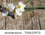 White Narcissus Flowers On...