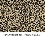 leopard pattern design  vector... | Shutterstock .eps vector #750741163