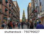 mexico city  mexico   november... | Shutterstock . vector #750790027