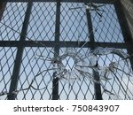 bullet holes through a glass... | Shutterstock . vector #750843907