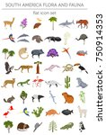 south america flora and fauna... | Shutterstock .eps vector #750914353