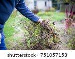 man hands clearing his garden... | Shutterstock . vector #751057153