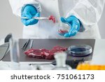 food safety expert inspecting... | Shutterstock . vector #751061173