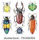 watercolor set of beetles...   Shutterstock . vector #751406503