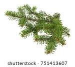 branch of christmas tree... | Shutterstock . vector #751413607