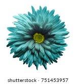 turquoise aster flower isolated ... | Shutterstock . vector #751453957