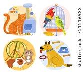 pets design concept including... | Shutterstock .eps vector #751516933