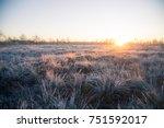 beautiful morning landscape... | Shutterstock . vector #751592017