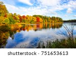 autumn forest trees reflection... | Shutterstock . vector #751653613