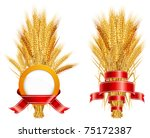 Ripe yellow wheat ears with red ribbon, agricultural illustration - stock vector