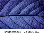 purple natural macro | Shutterstock . vector #751802167