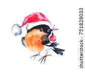 watercolor bullfinch with... | Shutterstock . vector #751828033