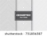 geometric pattern set. simple ... | Shutterstock .eps vector #751856587