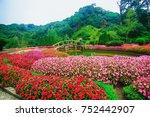 Flower Garden On Doi Inthanon ...