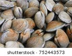 clams fresh market | Shutterstock . vector #752443573