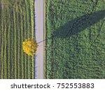 Aerial Top View Of Road Betwee...